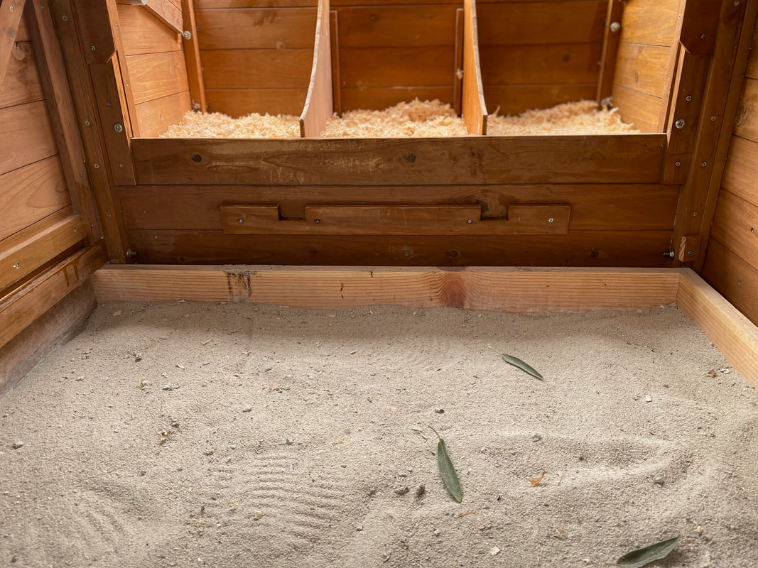 Sand in Chicken Coop