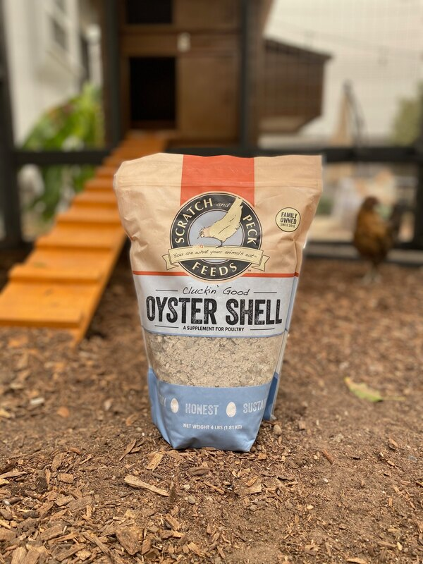 Oyster Shells for Chickens