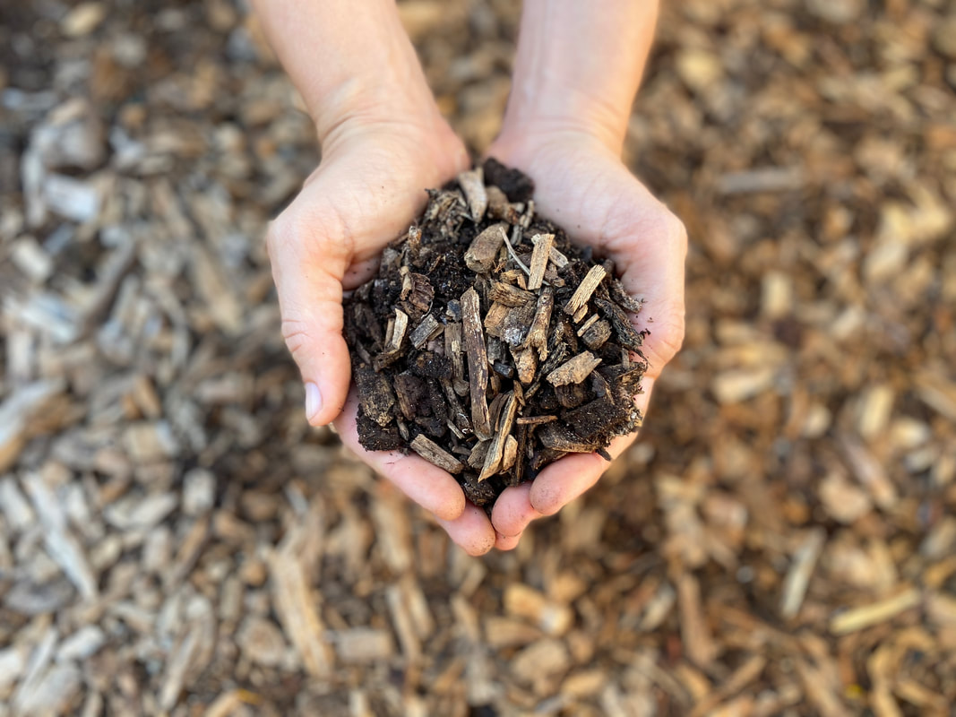 No-Till Gardening with Wood Chip Mulch